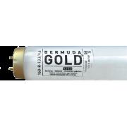 UV trubice - Bermuda Gold 800 R 20/180 180W
